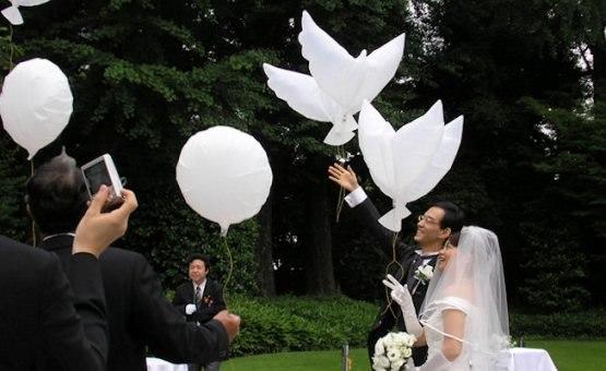 Биоголуби на свадьбу